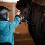 Iskola és lovasiskola - ne csak nyáron lovazzunk!